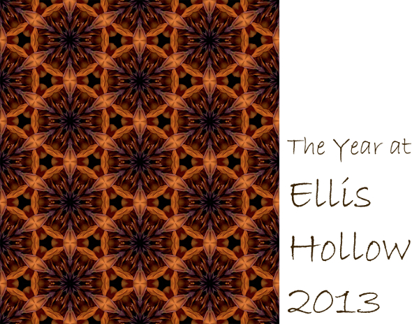 2013 Ellis Hollow calendar