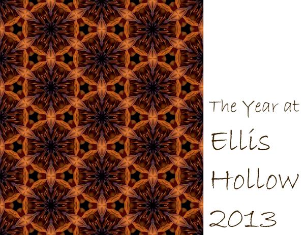 2013 Ellis Hollow calendar