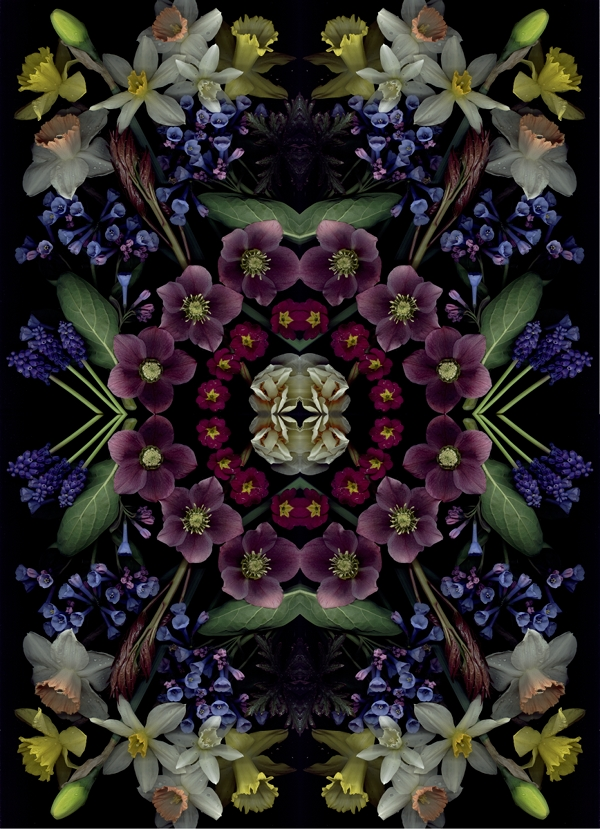 april bloom day scan mandala