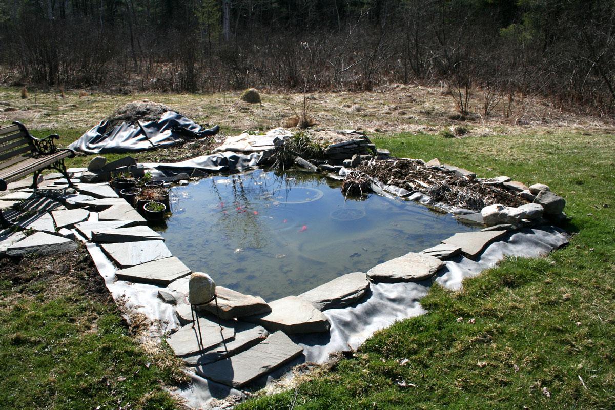 Water garden repair ellis hollow for Garden pool repairs