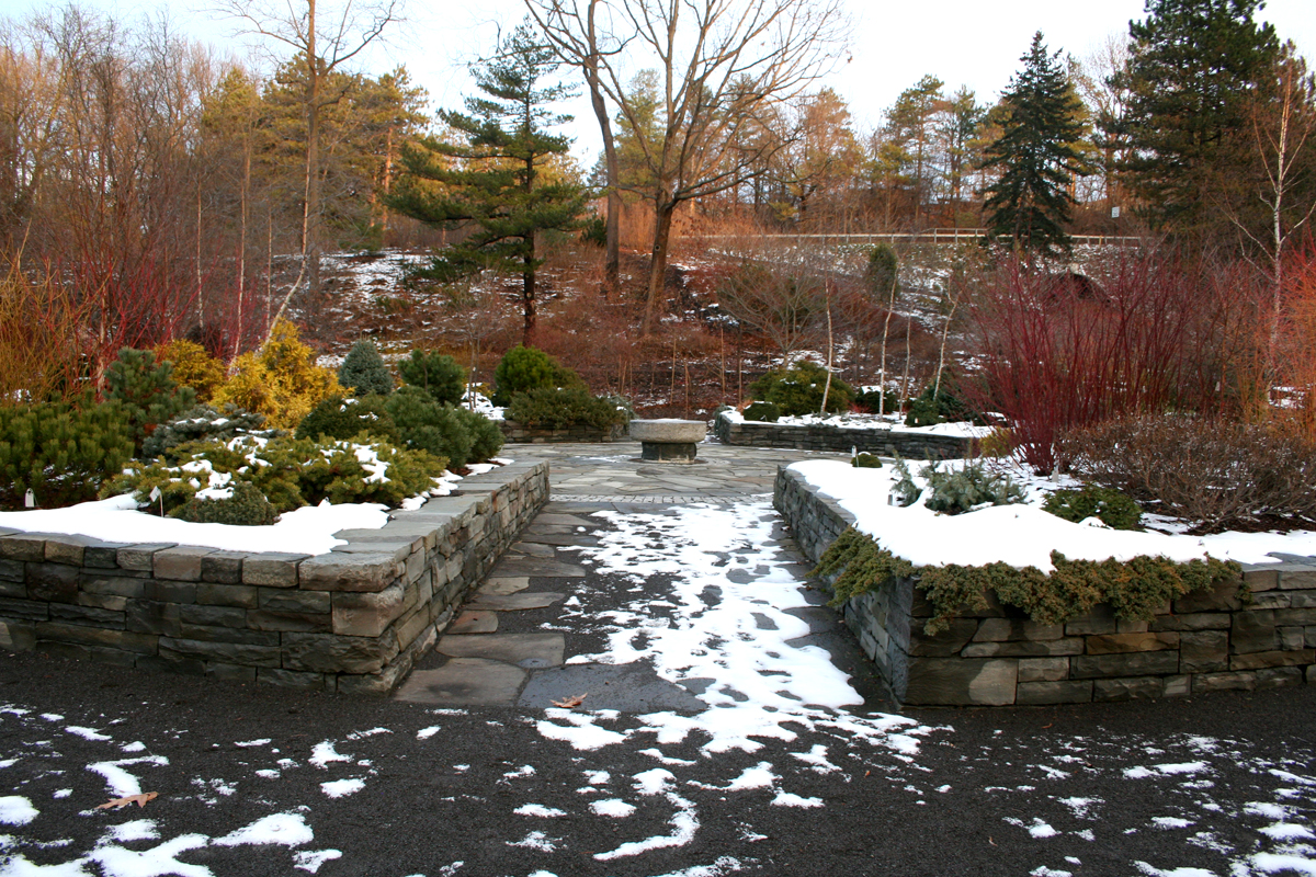 cornell plantations winter garden ellis hollow
