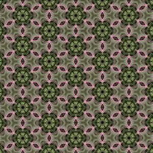 kale-wallpaper